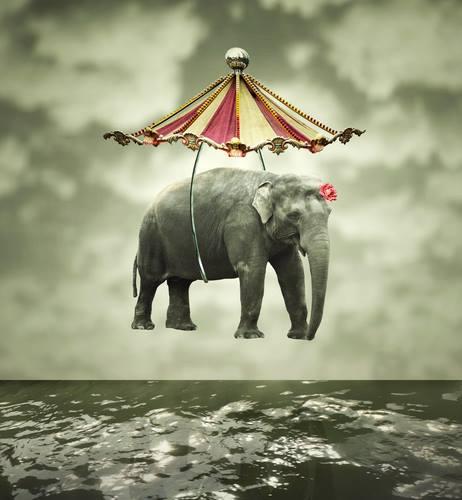 elefante appeso