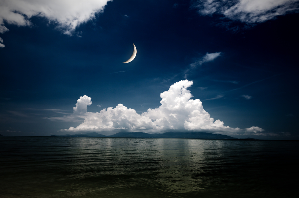 falce di luna5