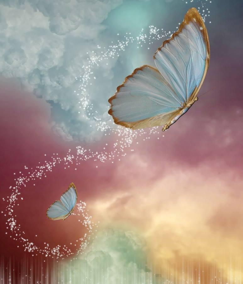 farfalle magiche