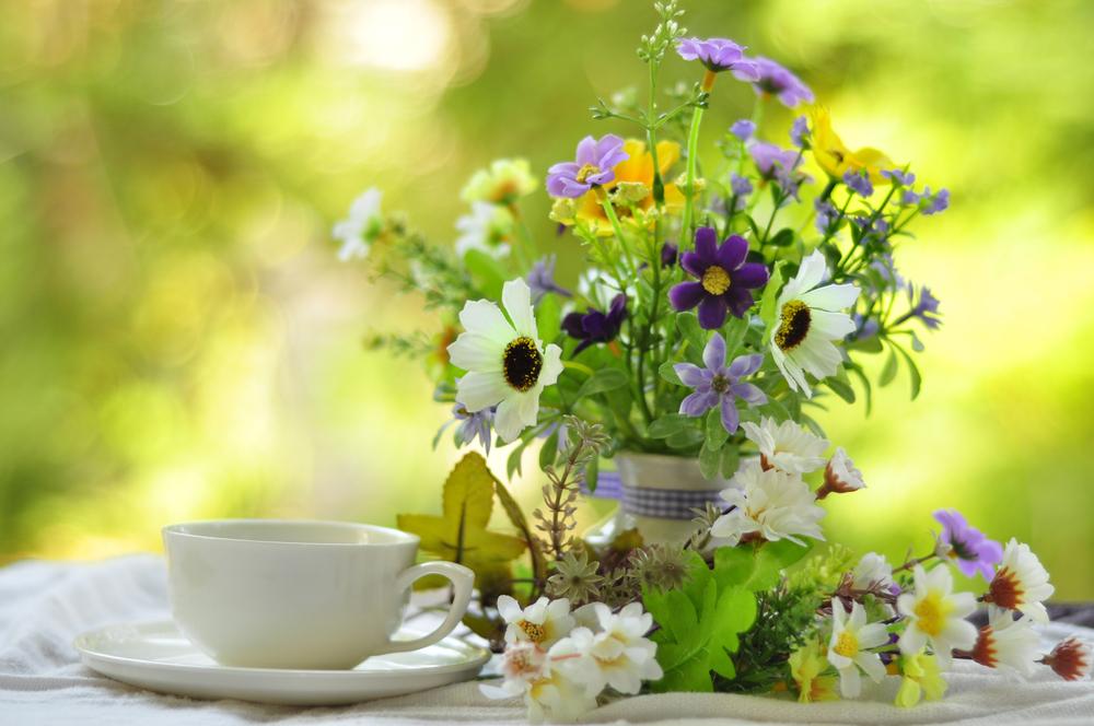 fiori buongiorno1