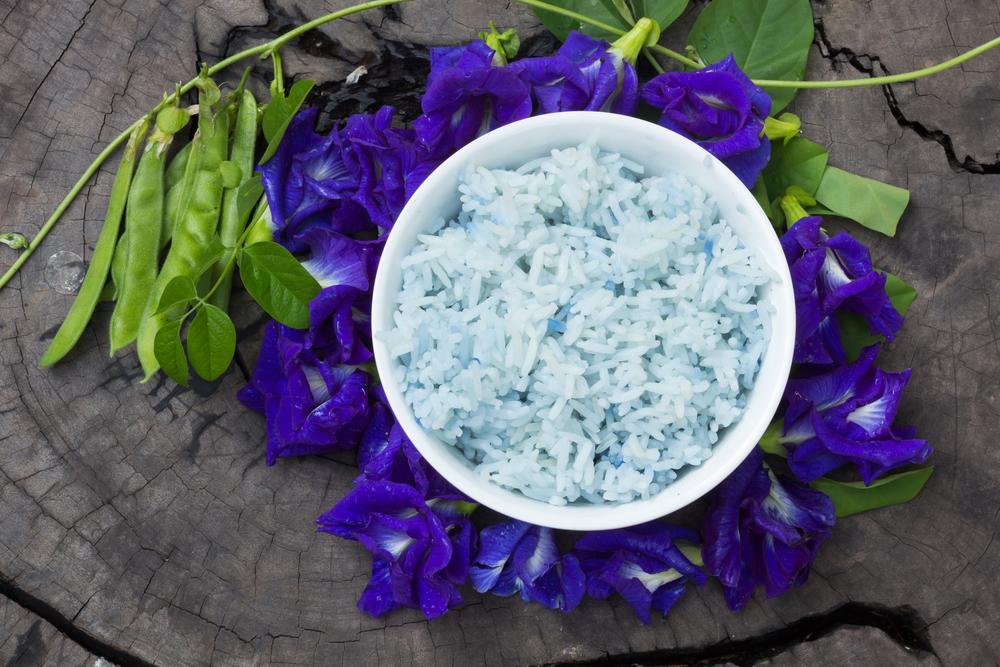 fiori riso blu