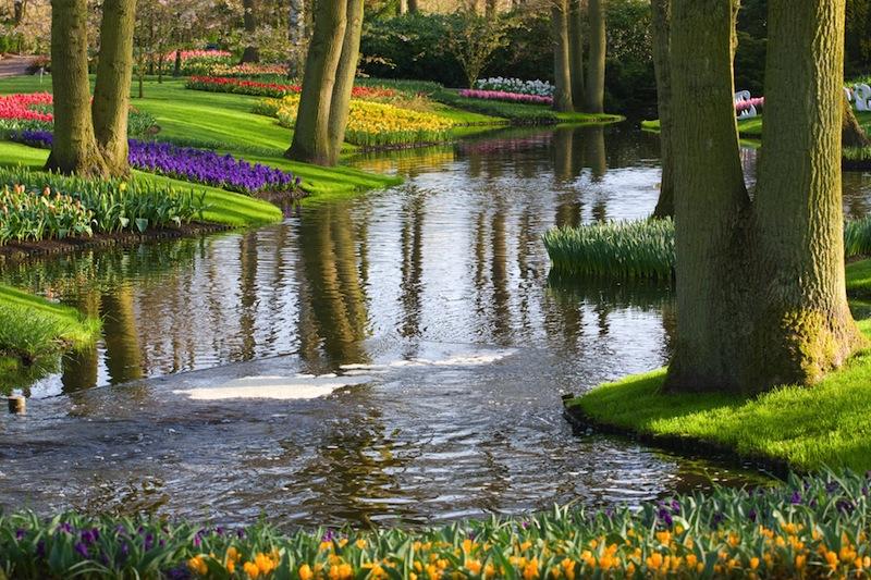garden in Keukenhof the Netherlands
