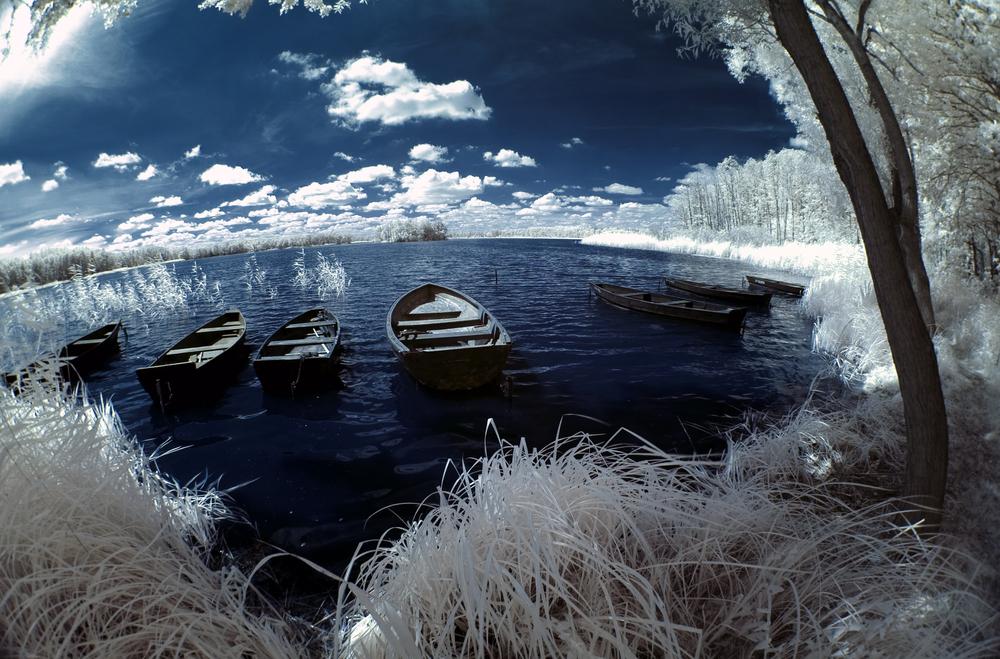 lago polona per copertina
