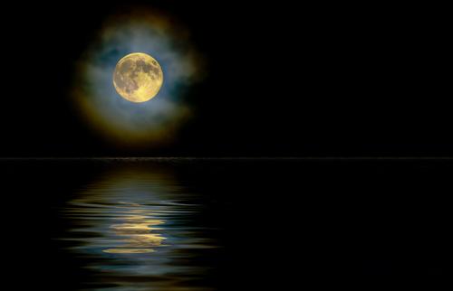 luna alone
