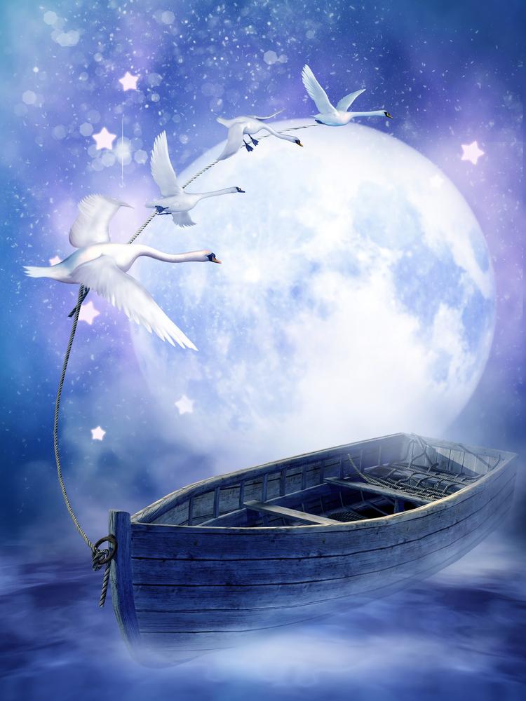 luna barca