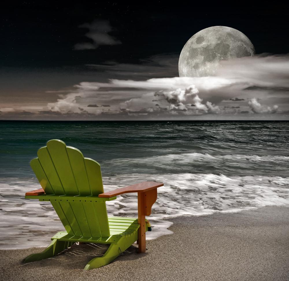 luna sedia