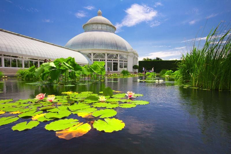 otanical Garden in the Bronx