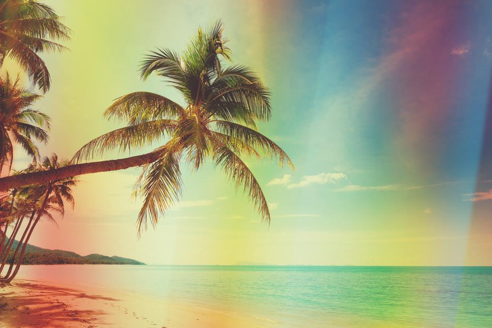 palma colori messico