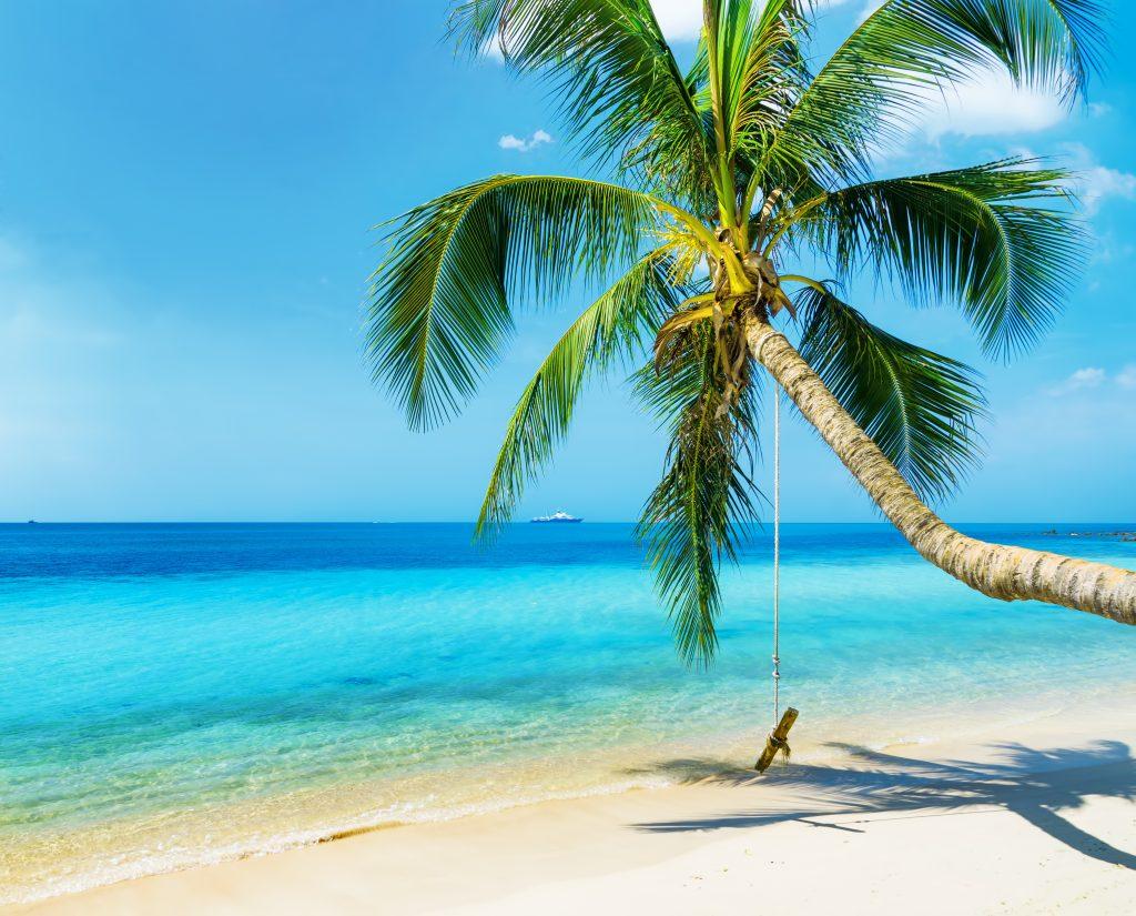 paradise island private