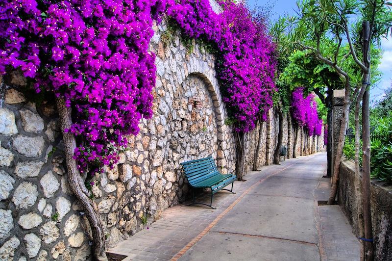 pathway in Capri Italy