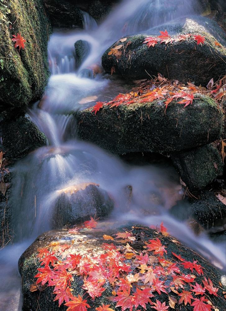 river maine