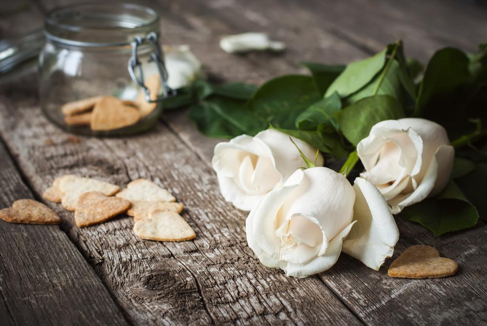 rose e biscotti