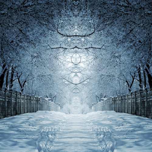 sentiero neve2