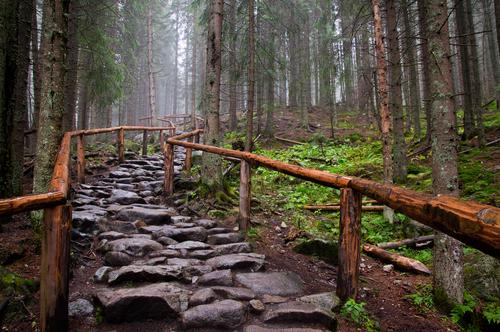 sentiero polonia