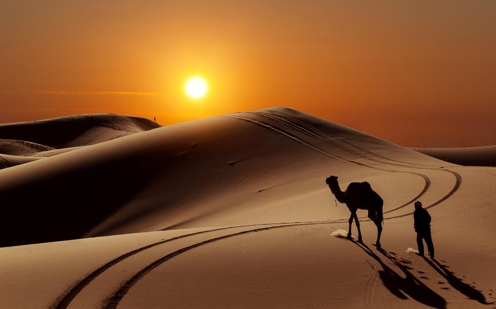 sgypt deserto