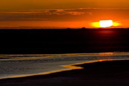sunset Parc Regional de Camargue Provence France