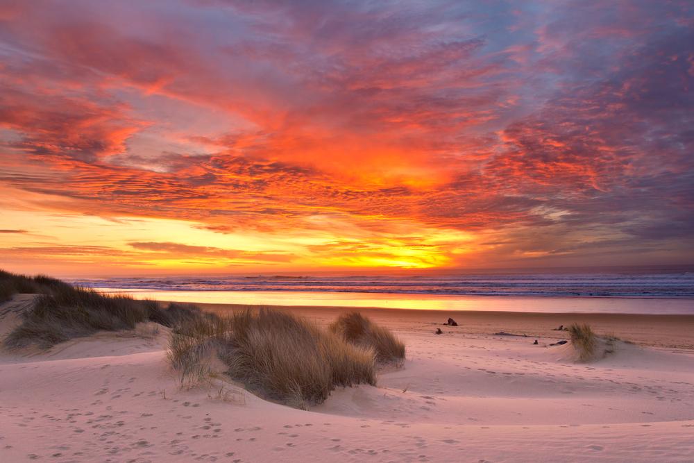 tasmania dune08