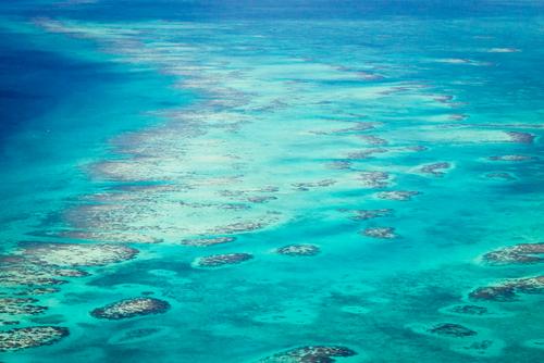 the coast of San Pedro Belize1