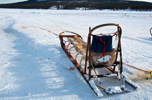 traditional Sami national sledge