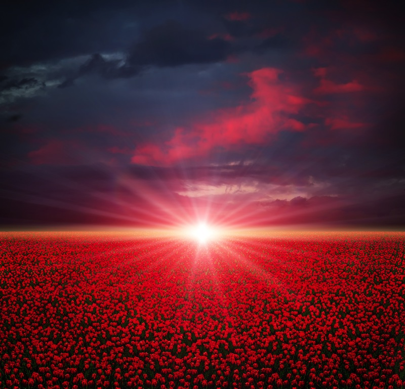 tramonto olanda