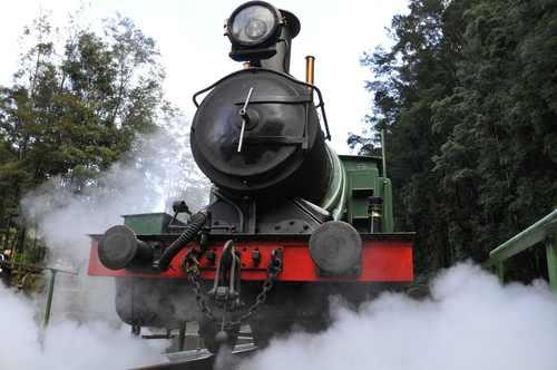 treno tasmania0