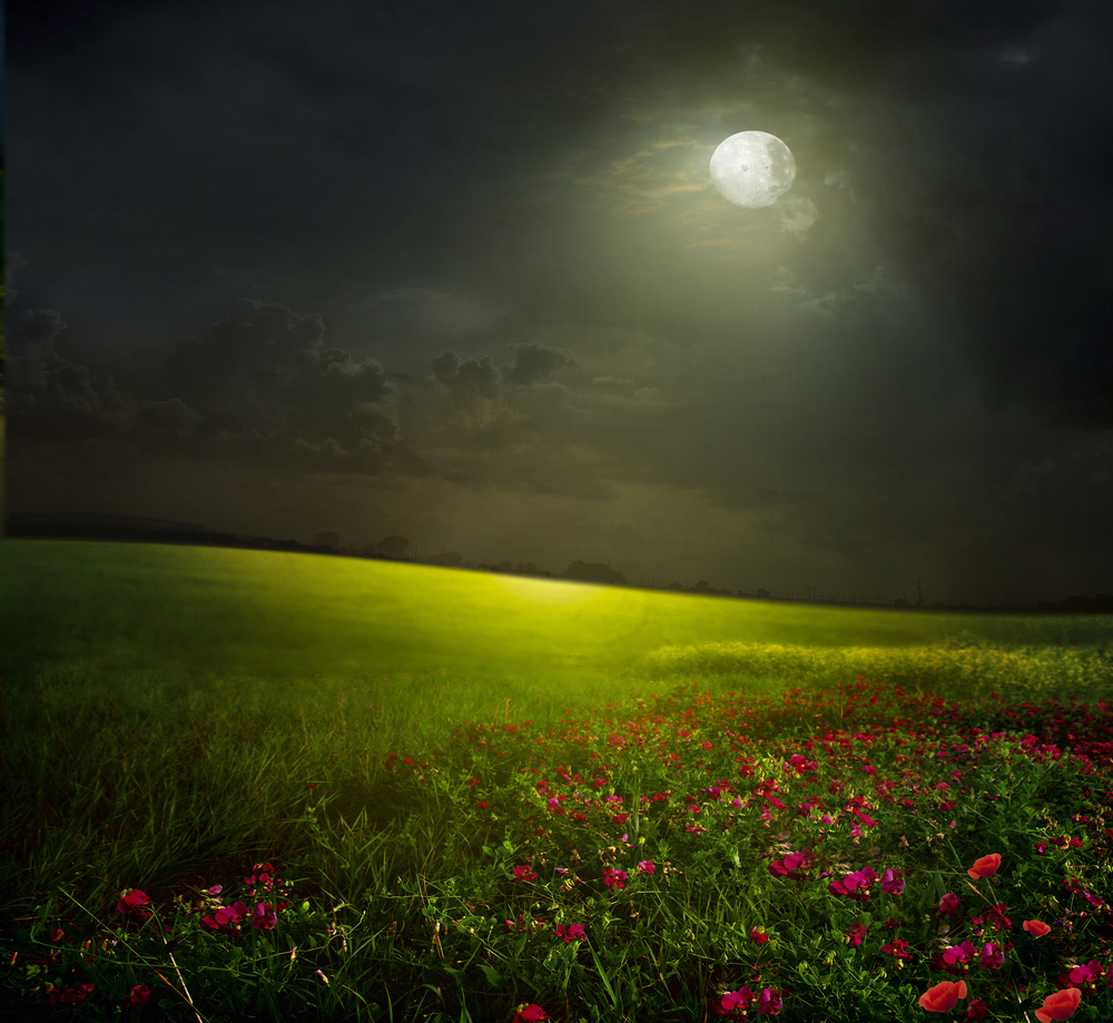 umbria luna