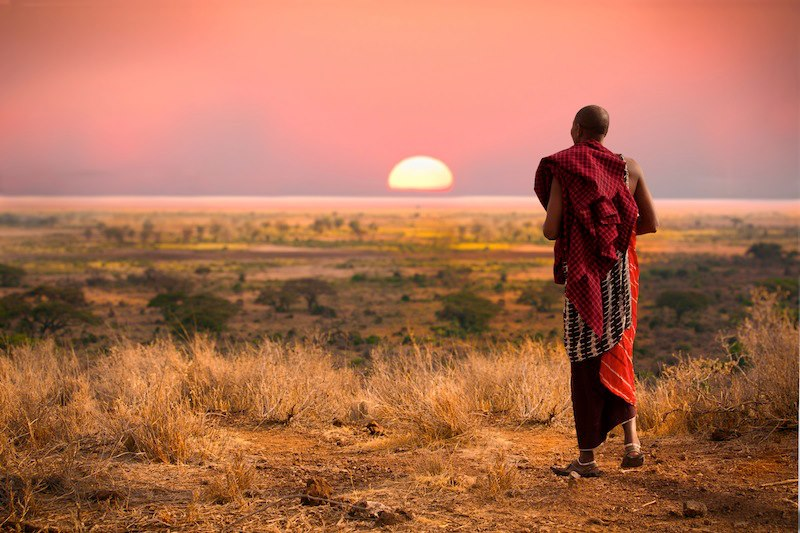 uomo cammina safari