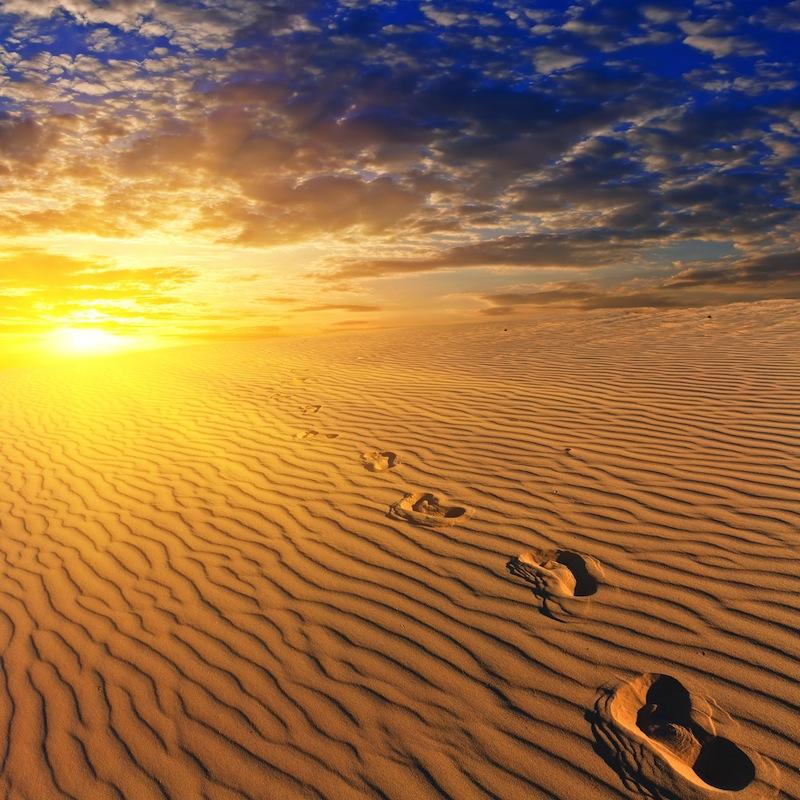 vening sandy desert