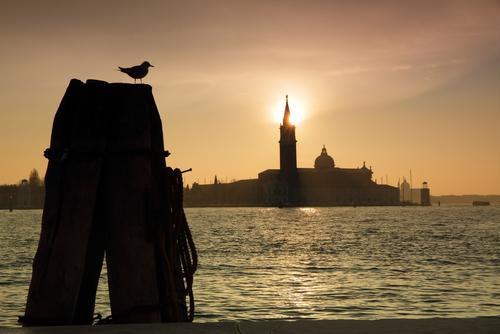 wonderful sunset on San Giorgio island in venetian lagoon Venice Italy Europe 0