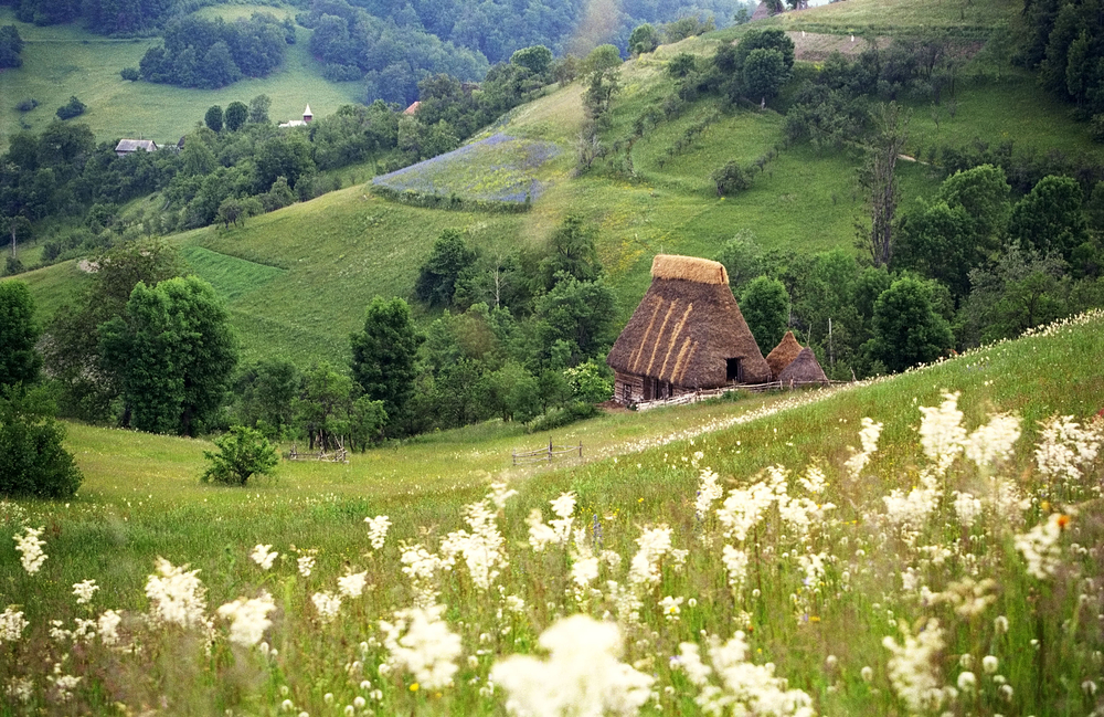wooden house in Maramures Romania