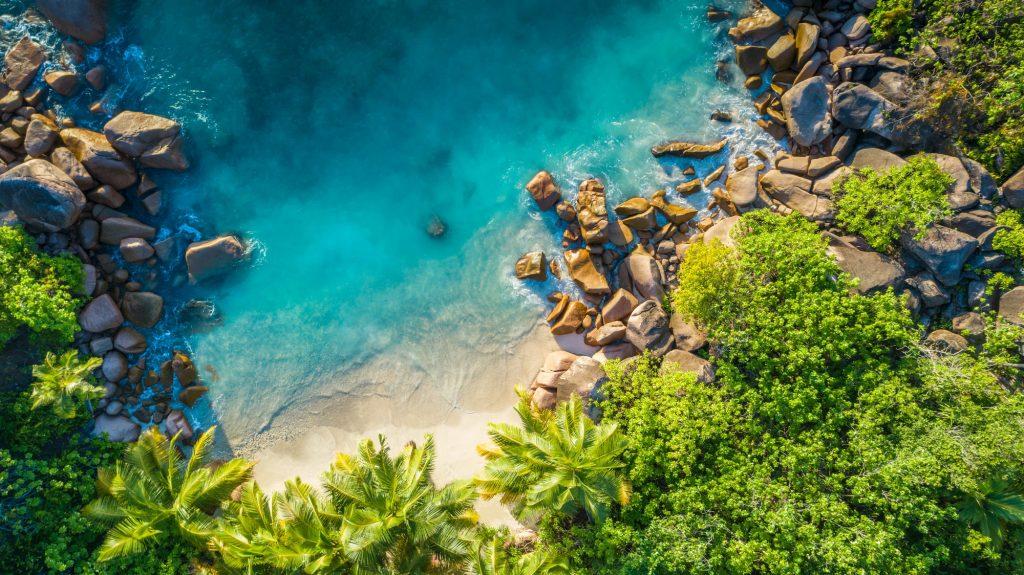 Seychelles famous shark beach twot 1